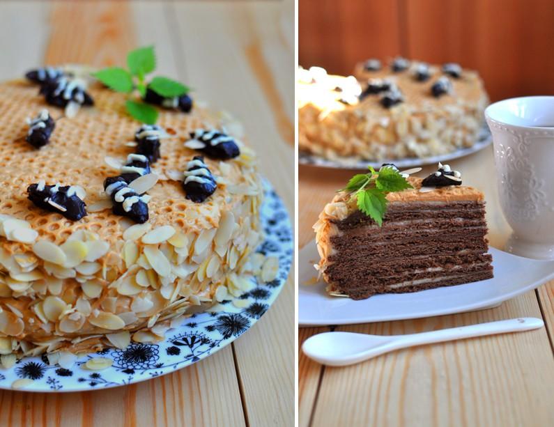 Шоколадный медовик рецепт с фото пошагово